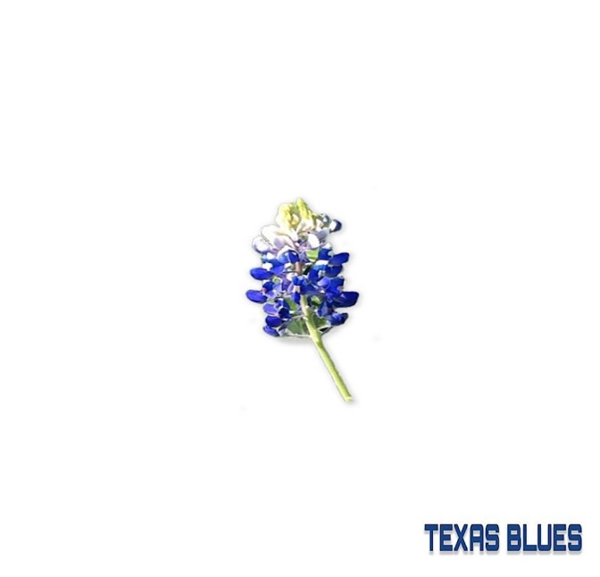 Baby Guwop – Texas Blues