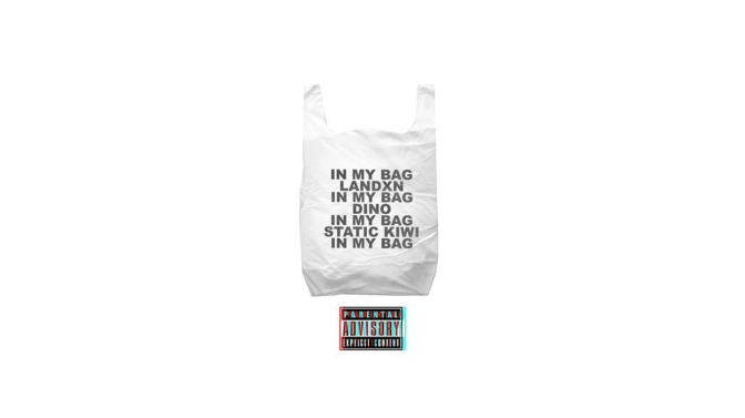 Static Kiwi – In My Bag